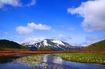 【周辺施設】尾瀬国立公園