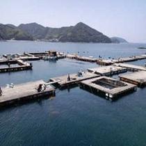 由良海釣り公園