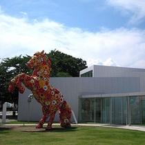 ◇十和田市現代美術館