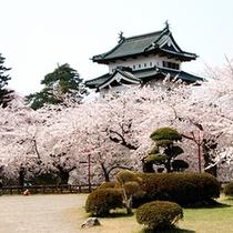 ◆弘前城公園さくらまつり
