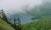 ウラ志賀山より大沼池を望む