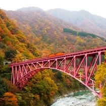 □黒部峡谷トロッコ電車(紅葉)