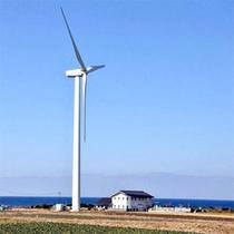 ■北条砂丘風力発電所■
