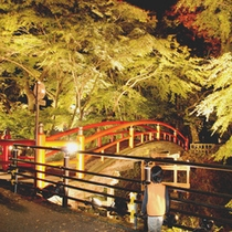 紅葉の名所 『河鹿橋』 かのうや散策口から徒歩5分!