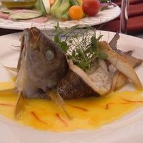 new.fish