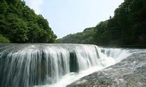 国の天然記念物に指定されている、吹割の滝です。
