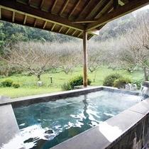 大浴場:白梅の湯4