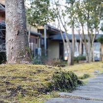 *【屋外施設(中庭)】日が沈む頃、建物はライトアップされ昼とは異なる表情をみせます。
