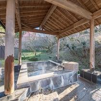 *【風呂(白梅の湯B露天風呂)】自然を眺めながらゆっくりとお寛ぎいただけます。