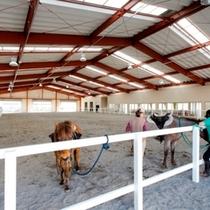 雨でも乗馬OK!全天候型の屋内馬場を完備。