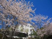 春のホテル