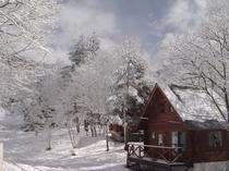 ログキャビン(冬)
