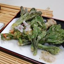春山菜料理