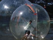 グランバル公園でとても人気です。