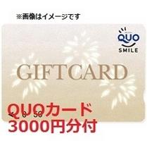 3,000円分QUOカードプラン
