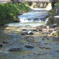 *周辺景色/お部屋は川沿いにあり、夏は川のせせらぎが涼しさを運んでくれます。