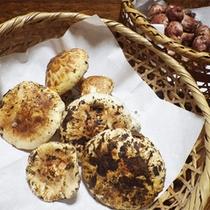 *料理一例【秋】/秋は周辺の山で採れた新鮮なきのこ類をたっぷりと使います♪