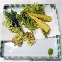 *料理一例【春】/周辺の山で採れた山菜を使った天ぷら。春ならではのお楽しみ☆