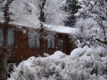 中庭の雪景色