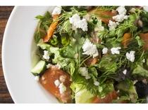 【亜欧旬感グリル夜光杯】 サーモントラウトと胡瓜のハーブサラダ