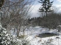 客室より、ある日の冬景色