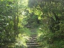 道順六、緑の回廊と石と土の階段