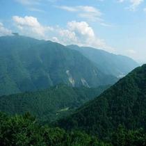 新緑の白山スーパー林道(6月上旬〜11月10日)