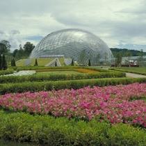 日本最大級のフラワーパーク『花回廊』