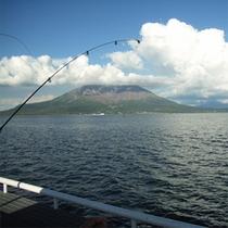 桜島海釣り公園