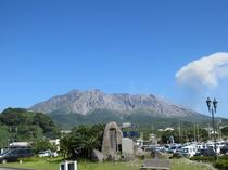 桜島(支配人撮影)