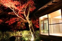 楓の間と紅葉