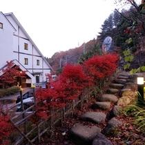 秋の石段(紅葉シーズン)
