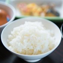 減農薬の特別栽培米石川県産こしひかり