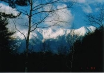 敷地からの御嶽山の眺望