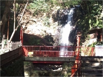 不動滝《徒歩約15分》藤木川の支流にかかる落差約15mの滝です。