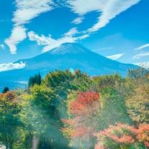 秀山荘からは富士山が綺麗に見ることができます。