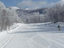 たんばらスキーパーク 霧氷