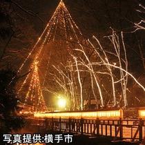 ■槻(つき)の木光のファンタジー≪当ホテルより車で約14分≫