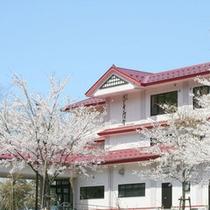 ■外観(桜満開)■