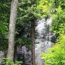 御嶽山のふもとには様々な滝があります