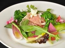 特別イタリア料理 SATOYAMA Nuovo 前菜