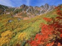 駒ヶ岳の紅葉