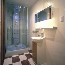 多機能シャワーブース※バスタブはありません。