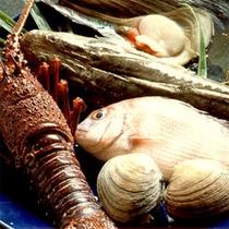 *新鮮魚介(一例)*