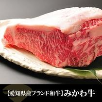 【愛知県産ブランド和牛】みかわ牛