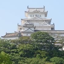 <姫路城 三十六景>四季:夏 シロトピア記念公園から ※提供 姫路市