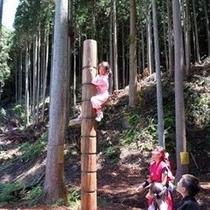 忍者の森での修行のひとつ。狸隠れの術