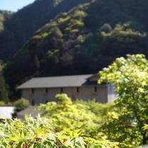 新緑のころの対泉閣。