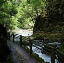 滝の散道。森林浴シーズン。