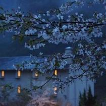 雨と桜と楓韻の館。